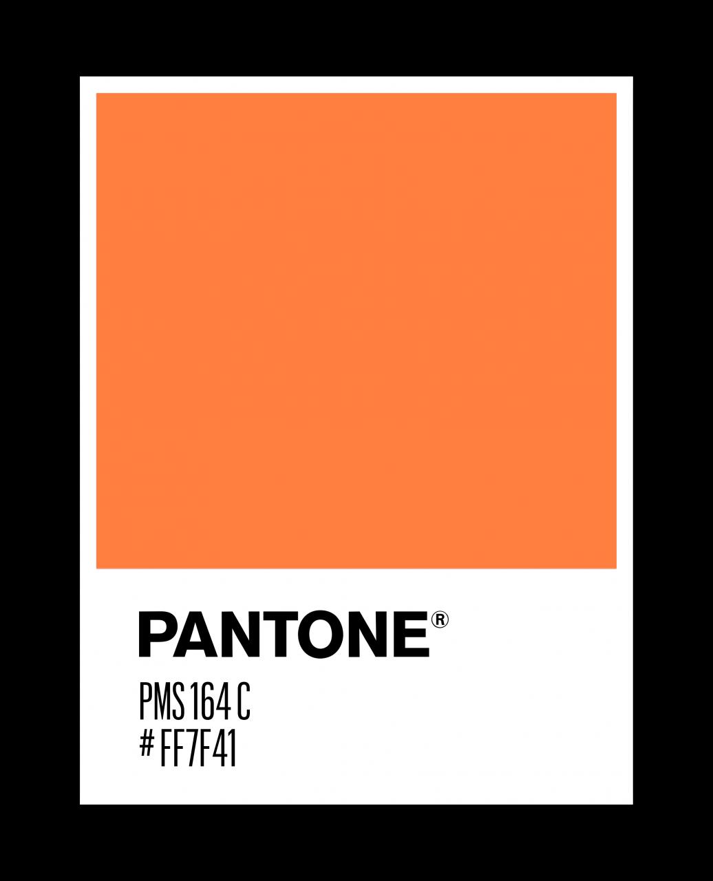 pantone_stories_500_arancione_pms_164_C